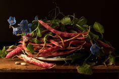 Cranberry & Beans, After G.G. 2009