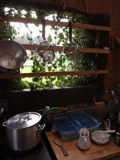 やや屋外キッチン@エピナール