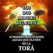 LOS DOS ARBOLES DEL EDEN
