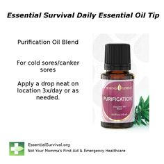 Use Purification for cold sores or canker sores.