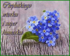 Forget Me Not, Greek Quotes, Flowers, Blues, Humor, Good Morning Funny, Humour, Funny Photos, Royal Icing Flowers