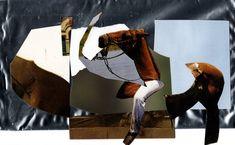 le cheval chevalier-Agamavieira