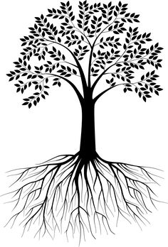 Black and white tree silhouette with roots - VectorStock