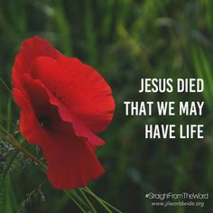 Resurrection and Life  He died that we may have life!  Read more: http://www.jilworldwide.org/archives/57-news-archive/2014-archives/643-resurrection-and-life