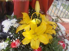 Gigli gialli, rose bianche con striature rosse e fiori bianchi al Venerdì santo di Siculiana (Ag) www.CMGiardinaggio.blogspot.com  www.CMViaggi.blogspot.com  #CMGiardinaggio #CMViaggi #CMItaliaViaggi #CMViaggiSicilia #CMViaggiAg