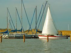 Segelboot Sailing Ships, Rust, Sailboats, Renting, Sailing, Surf