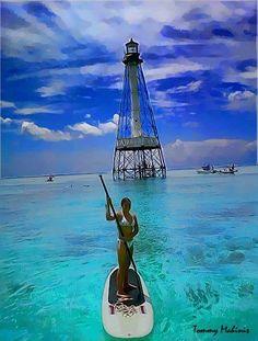Standup Paddleboard at Alligator Reef Lighthouse Islamorada. Stand up paddle surfing (SUP) Sup Stand Up Paddle, Kayak Paddle, Sup Boards, Key West Florida, Florida Keys, Fl Keys, Florida Adventures, Hawaii, Sup Yoga