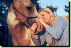 Interesting ways to build and strengthen a bond and trust with your equine partner.   I'm excited to see if any of these will work.