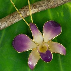 Novica Handmade plated Orchid Orchid Fantasy Brooch Chain Style Necklace