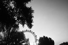 Prater by Sanjin Jukic has reached Popular on  Art Photography, Celestial, Popular, Black And White, Artist, Travel, Outdoor, Black White, Outdoors