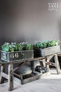 + #herbs #storage #weathered | Renee Arns