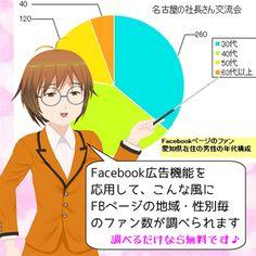 都道府県・市町村毎にFacebookページのファン数を調べる方法