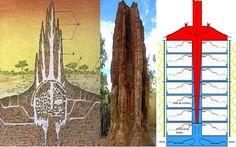 A Biomimética vem auxiliando o ser humano no uso de tecnologias mais eficientes e sustentáveis. A biomimética é uma área da ciência que estuda as...