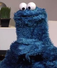 Cookie Monster has the answer to all your problems in this awesome PBS video.