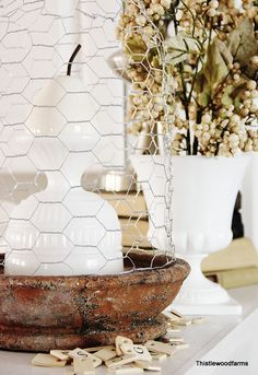 How to Make a Chicken Wire Cloche - this would be good for climbing/vining plants indoors and out