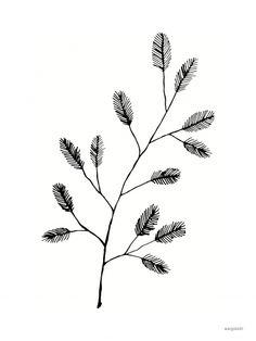 The Twig - (30x40)