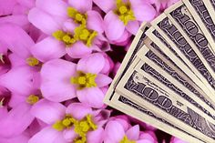 6 Secrets to Manifest Money Fast - Sarah Prout Sarah Prout, Ask Believe Receive, Finding Yourself, Make It Yourself, Manifesting Money, Stop Worrying, Money Today, How To Manifest, Law Of Attraction