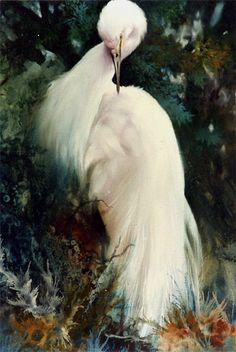 "Jenkins Art Studio - GALLERY 2  ""Snowy White Egret"""