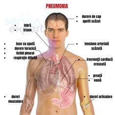 Life Care, Human Anatomy, Human Body, Infographic, Health, Nursing, Yoga, Female Doctor, Therapy