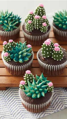 Kaktus Cupcakes, Succulent Cupcakes, Wilton Cakes, Baking Cakes, Baking Desserts, Wilton Cake Decorating, Easy Cheesecake Recipes, Cupcake Recipes, Decorated Cookies