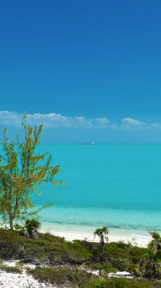 Beachy blue in Turks and Caicos, West INdies