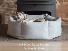 The Ducky Donut Dog Bed - deluxe donut bed by Charley Chau