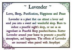.Lavender Correspondences