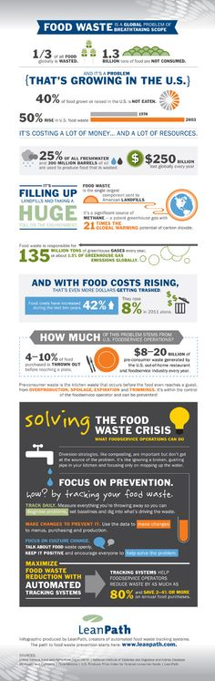 The Food Waste Crisis