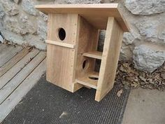 how to build a squirrel house out of wood - Google Search ...