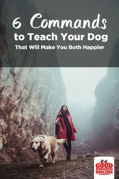 Dog Training Tips 6 Dog Obedience Training Commands to Teach Your Dog. Check out these dog training tips on teaching your dog basic obedience commands so that your dog listens and obeys. Dog Training Techniques, Dog Training Tips, Potty Training, Leash Training, Toilet Training, Brain Training, Training Plan, Training Center, Dog Minding
