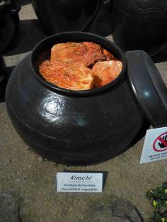 Kimchi - verdure fermentate prevengono l'obesità invecchiamento precoce, abassa la pressione sanguigna