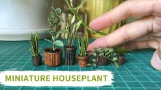 Miniature Houseplant Tutorial Make From Scraps - Upcycling Project #3 Diy Doll Miniatures, Dollhouse Miniature Tutorials, Miniature Dolls, Diy Dollhouse, Dollhouse Furniture, Miniture Diy, Miniture Things, Miniature Plants, Miniature Houses