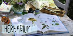 http://www.floraproduction.de/wp-content/uploads/2015/05/00931530_bs_0000000000892548-Kopie.jpg