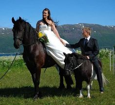 Funny Wedding Photos This is only bad if that isn't a moonwalking pony. If it is, he totally wins. - Who Likes Hilarious Wedding Pics?Put yer eye on more funny wedding photos. These wedding day disasters Wedding Photo Fails, Worst Wedding Photos, Awkward Wedding Photos, Wedding Fotos, Wedding Fail, Horse Wedding, Awkward Family Photos, Crazy Wedding, Before Wedding