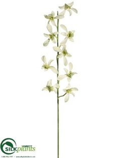 Create a calming setting in your space with our #silk #Caesar #Orchidflowers