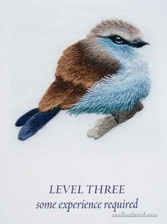 Needle Painting Embroidery Book for beginners.  Someday I will do this bird.: