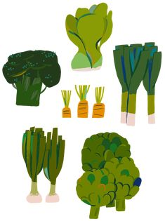 The Vegetable Forest on Behance