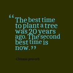 Quotes Picture: the best time to plant a tree was 20 years ago the second best time is now