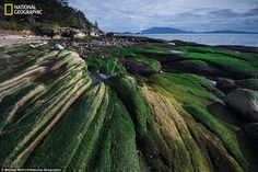 Patos Island, Washington, is part of a thousand-acre national monument created last year by President Barack Obama. Wilderness, a higher form of land protection, covers 350 acres of the San Juans¿but only Congress can designate a wilderness