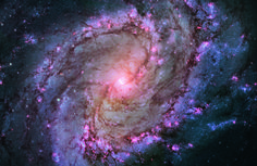 A photogenic and favorite target for amateur astronomers, the full beauty of nearby spiral galaxy M83 is unveiled in all of its glory in this Hubble Space Telescope image. The galaxy lies 15 million light-years away in the nearest constellation, Hydra.