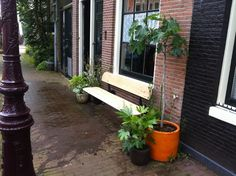 dutch design; opklapbaar gevelbankje; Amsterbankje Plants, Garden, Design, Garten, Planters, Gardening, Outdoor, Home Landscaping, Plant