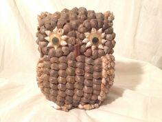 VTG Sea Shell Folk Art Phillipeans Beach Ocean Money Coin Owl Bird Bank