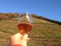 ココワイナリー、足利市。 九州沖縄サミット、洞爺湖サミットで晩餐会に供せられたワインだ。