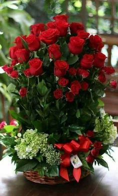 red roses for a blue lady Beautiful Flowers Wallpapers, Beautiful Rose Flowers, Amazing Flowers, Pretty Flowers, Valentine Flower Arrangements, Rose Flower Arrangements, Valentines Flowers, Birthday Wishes Flowers, Happy Birthday Flower