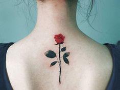 Lindo Flor Rosa