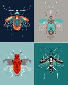 Adam Gale beetle prints