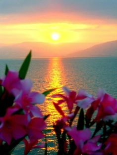 Sunset on the sea of Galilee #skyline #breathtaking