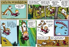 calvin and hobbes meaning of life   Calvin and Hobbes are at it again, making great points in less than 10 ...