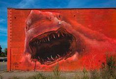 by Shark Toof in Detroit, MI, 9/15 (LP)