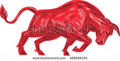 Drawing sketch style illustration of a bull facing attacking charging viewed from the side set on isolated white background. #bull #sketch #illustration